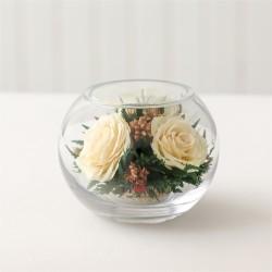 Айвори розы