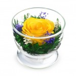 """Цветы в стекле """"Лучик солнца"""""""