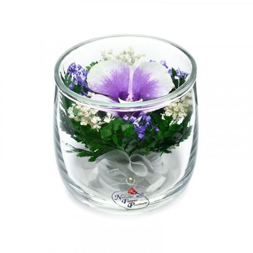 """Цветы в стекле """"Ангелочек"""""""