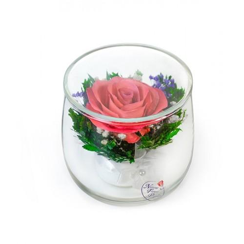 """Цветы в стекле """"Просто прелесть"""""""